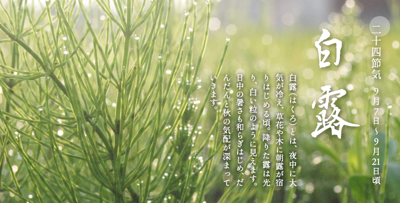 二十四節気と七十二候|暦生活