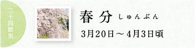 春分(しゅんぶん)次侯 桜始開(さくらはじめてひらく) 七十二候と旬のおはなし