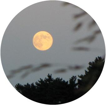 9月の満月|満月の日コラム