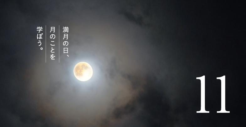 11月の満月|満月の日コラム