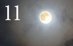 薄月夜/銀閣寺/双眼鏡で月を見る/見上げる月と見下ろす月/月見の森