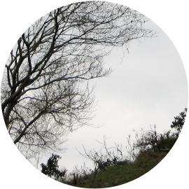 閉塞成冬(そらさむくふゆとなる)イメージ