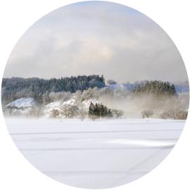 雪下出麦(ゆきわたりてむぎいずる)イメージ
