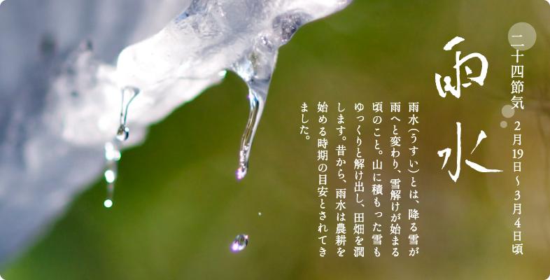 https://www.543life.com/image/season/2usui/bnr_usui.jpg