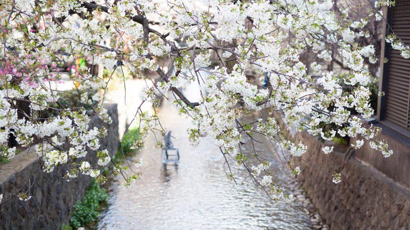 春分 しゅんぶん 二十四節気と七十二候 暦生活