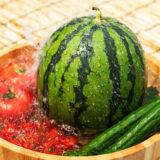 熱を逃すスイカとトマト
